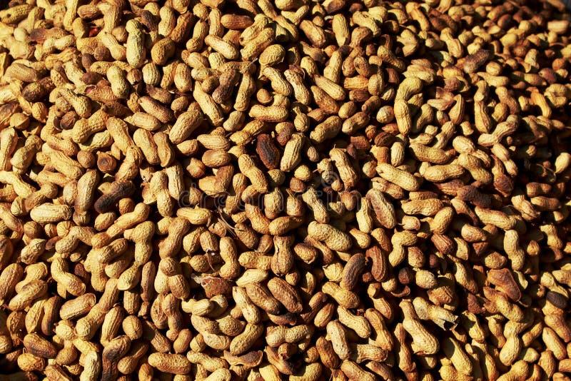 Montão do amendoim imagem de stock