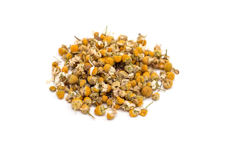 Montão do chá de camomila erval seco isolado no branco imagem de stock royalty free