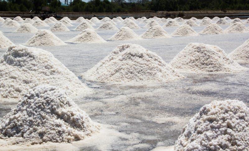 Montão do sal do mar na exploração agrícola de sal imagens de stock