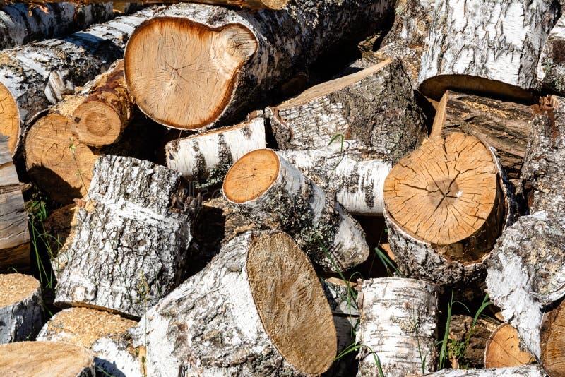 Montão enorme da lenha marrom feito das árvores imagem de stock