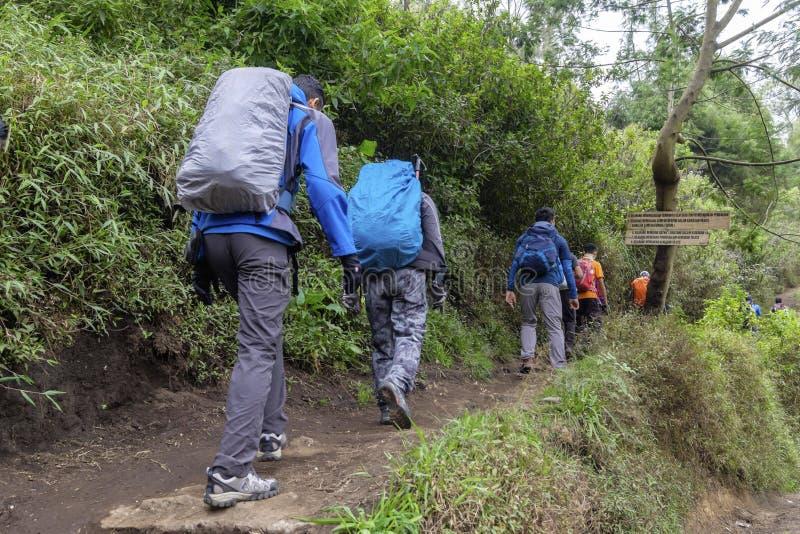 Montée de randonneur de groupe pour monter Semeru, un outre du beau bâti de volcan en Indonésie images libres de droits
