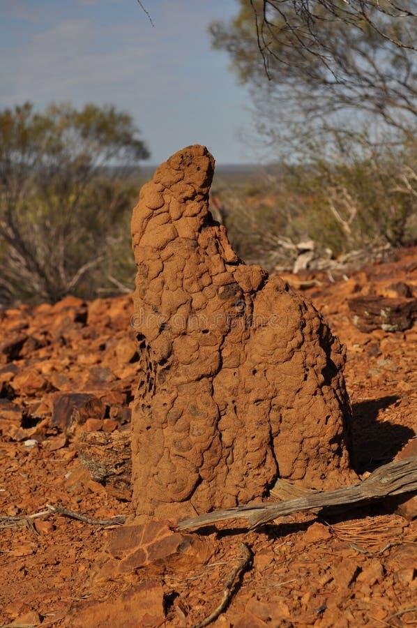 Montón de la termita en australiano interior fotografía de archivo