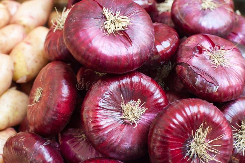 Montón de la venta cruda roja de las cebollas en el cierre del mercado para arriba, bulbo de la cebolla del cepa del allium con l imagen de archivo