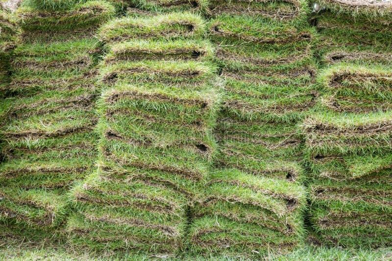 Montón de los céspedes naturales de la hierba imagen de archivo libre de regalías