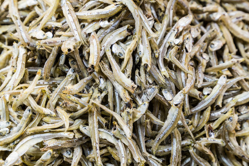 Montón de los pescados secados y salados de la anchoa fotografía de archivo libre de regalías
