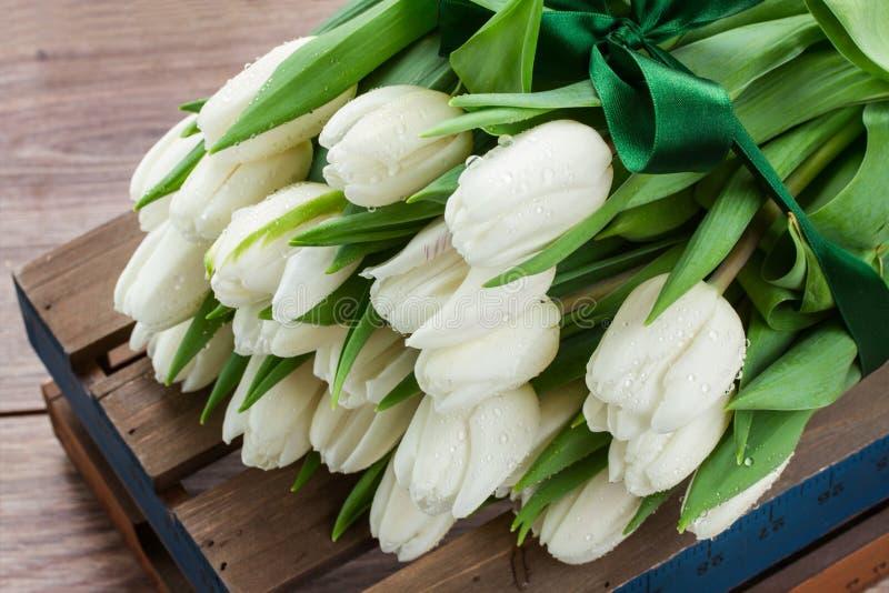 Montón de los tulipanes blancos fotografía de archivo