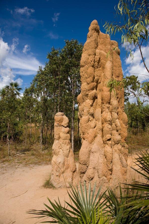 Montón gigante de la termita fotografía de archivo