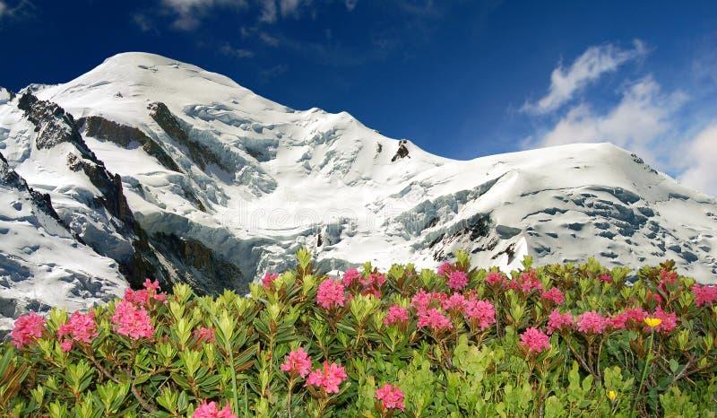 mont Франции blanc стоковое фото rf