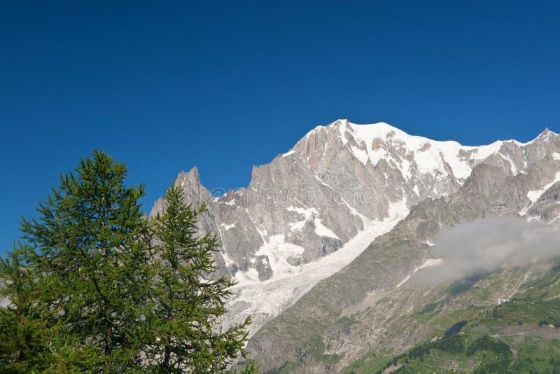 mont blanc стоковые фото