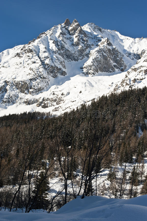 Mont Blanc seen from Val Ferret Courmayeur, Aosta Valley, Italy royalty free stock image