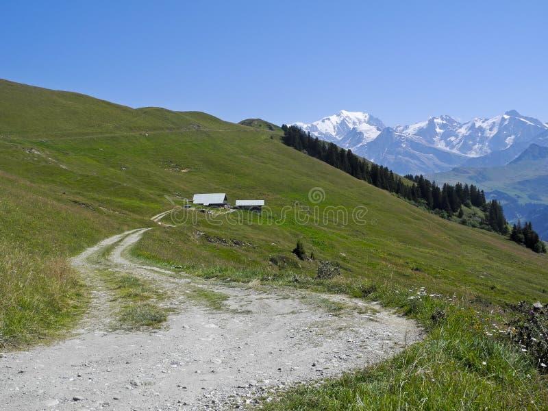 Mont Blanc van Les Saisies royalty-vrije stock fotografie
