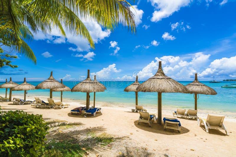 Mont choisy, общественный пляж на островах Маврикия, Африке стоковая фотография rf