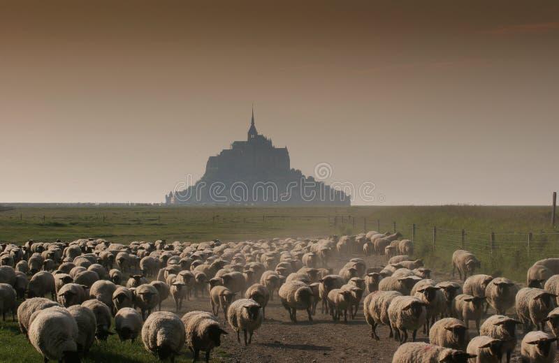 Mont heilige Michel, Normandië, Frankrijk stock fotografie