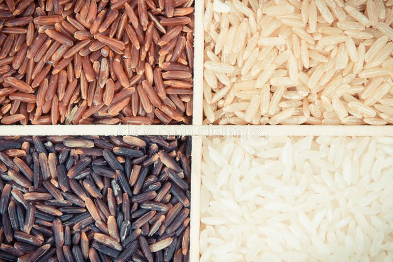 Mont?n del arroz blanco, marr?n, rojo y negro, concepto sano de la nutrici?n imágenes de archivo libres de regalías