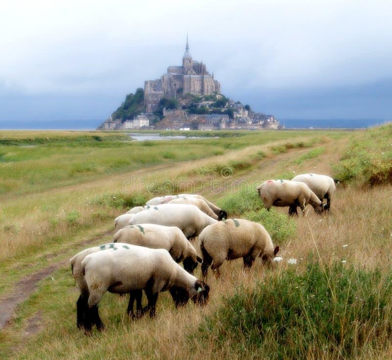 Free Mont Saint Michel Bay Stock Photo - 1146010