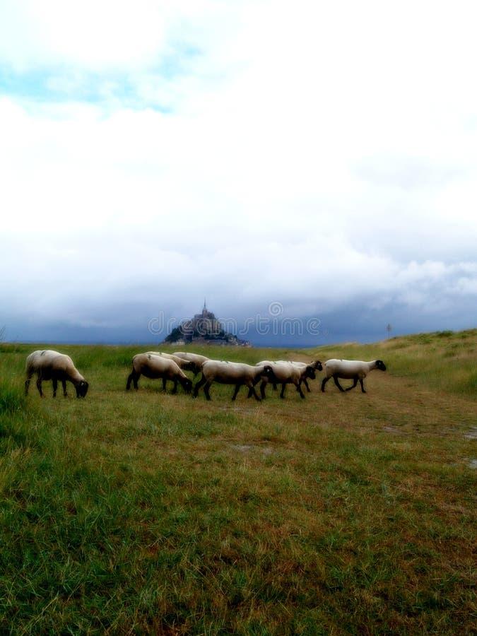 Mont Saint Michel Bay stock photos