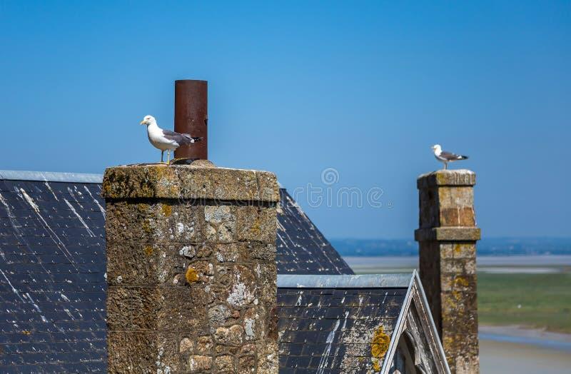 Mont Saint Michel, la Bretagne, France photos stock