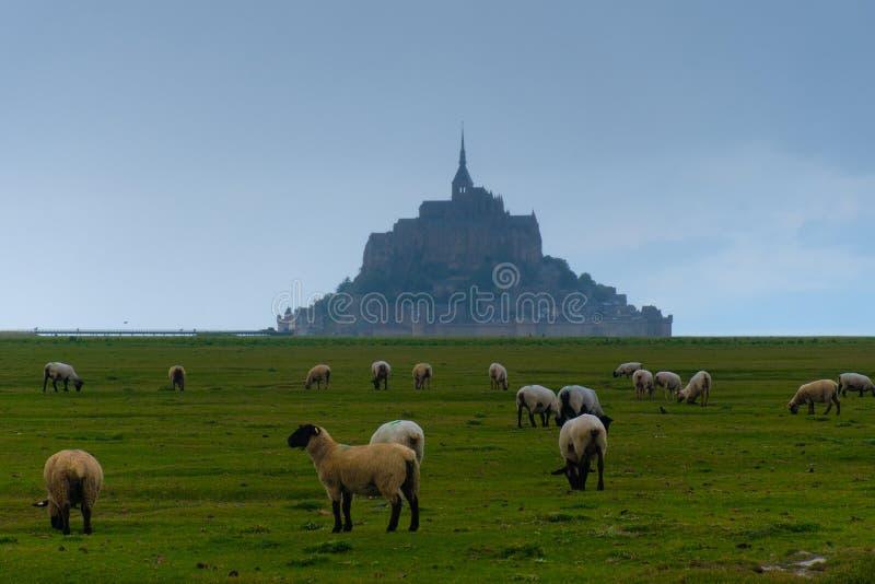 Mont Saint Michel in Normandie Nord von Frankreich lizenzfreie stockfotografie
