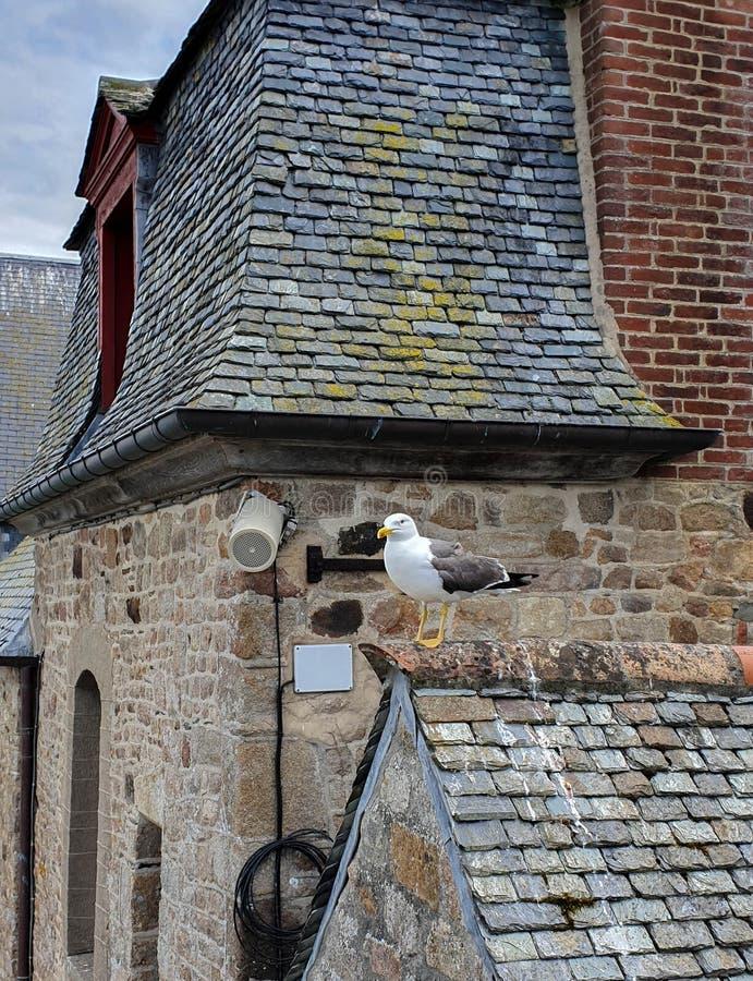 Mont saint-michel, Normandy, północny Francja Lato 2019 fotografia royalty free