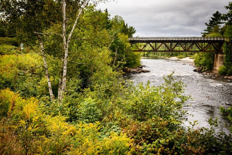 Mont-Tremblant nationalpark, Kanada - bro fotografering för bildbyråer