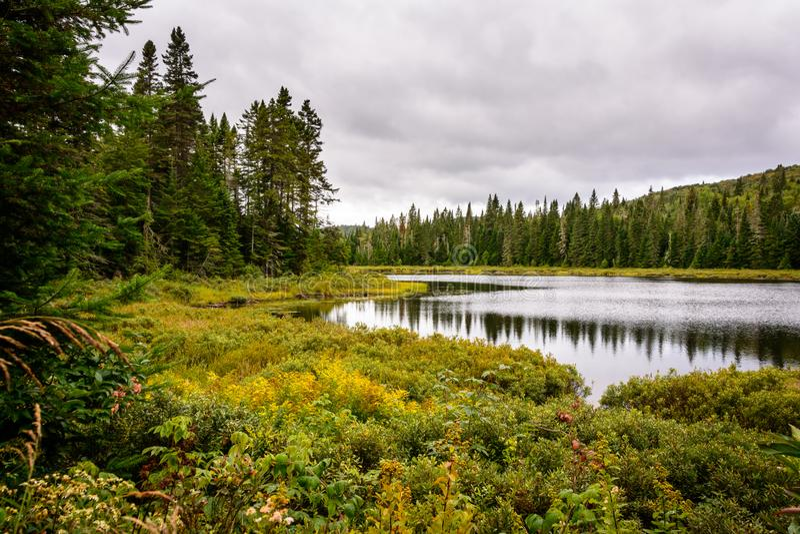 Mont-Tremblant nationalpark, Kanada - landskap 2 arkivfoto