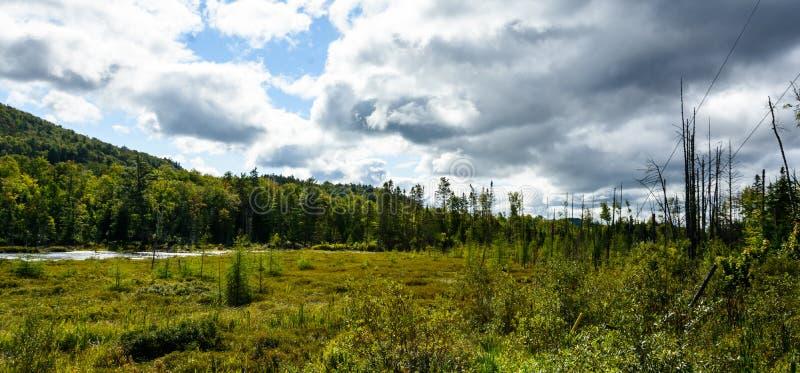 Mont-Tremblant nationalpark, Kanada - sjö och marsklan arkivfoto