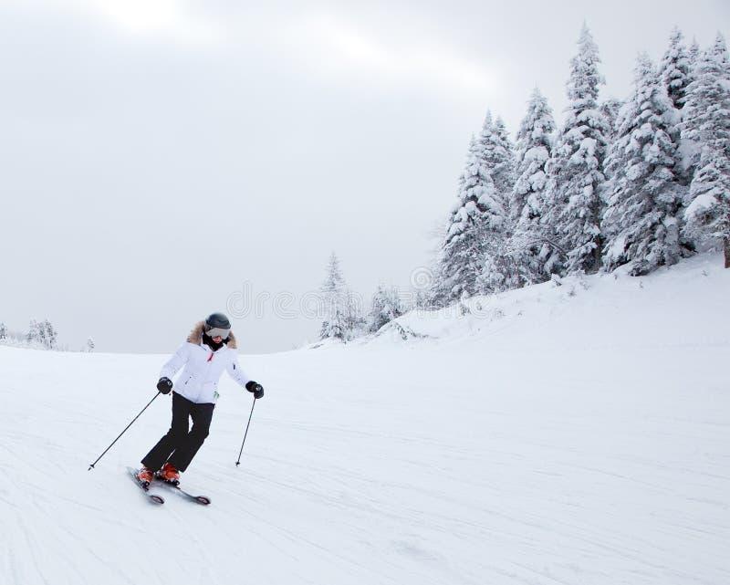Mont-Tremblant Ski Resort, Quebec, Canada royalty-vrije stock fotografie