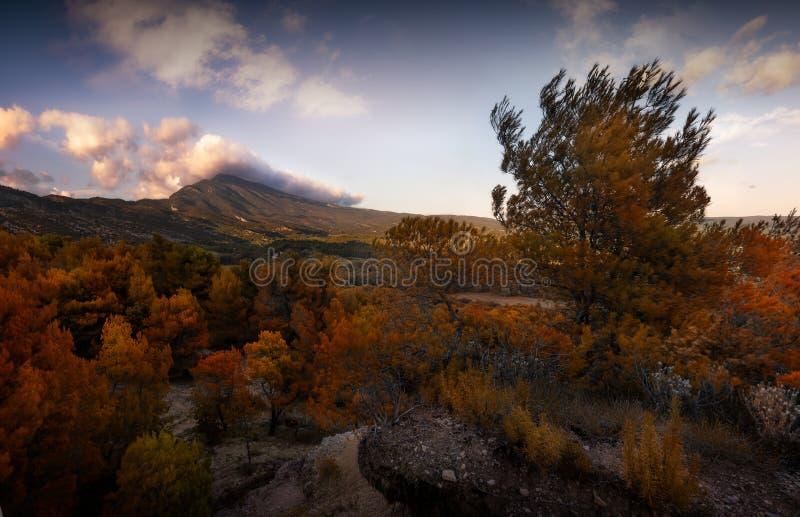 Mont Ventoux 库存图片