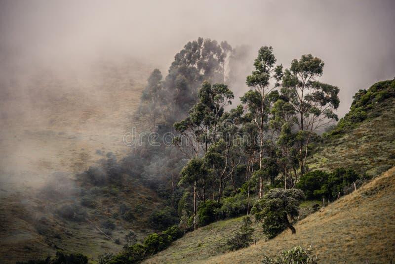Montaña Labruma de la Gran stockbilder