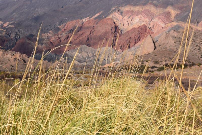 Montañas de las d'en d'Atardecer photos stock