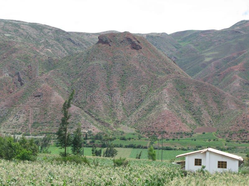 Montañas de Peru, rodeada de verdes praderas arkivbilder