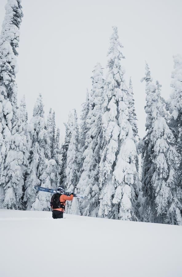 Montañés que camina para arriba a lo largo de una montaña nevosa con los esquís en la mochila Esquiador en la pista que sube para foto de archivo
