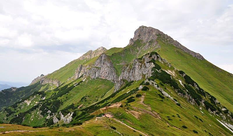 Montaña Belianske Tatras, Eslovaquia, Europa fotografía de archivo libre de regalías