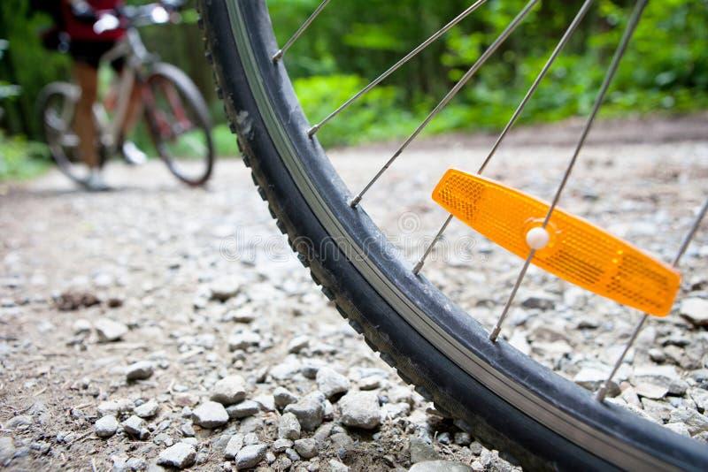 Montaña biking en un bosque foto de archivo libre de regalías