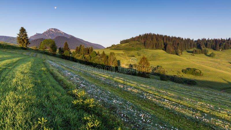 Montaña Choc en la salida del sol cerca de Dolny Kubin, Eslovaquia fotografía de archivo libre de regalías