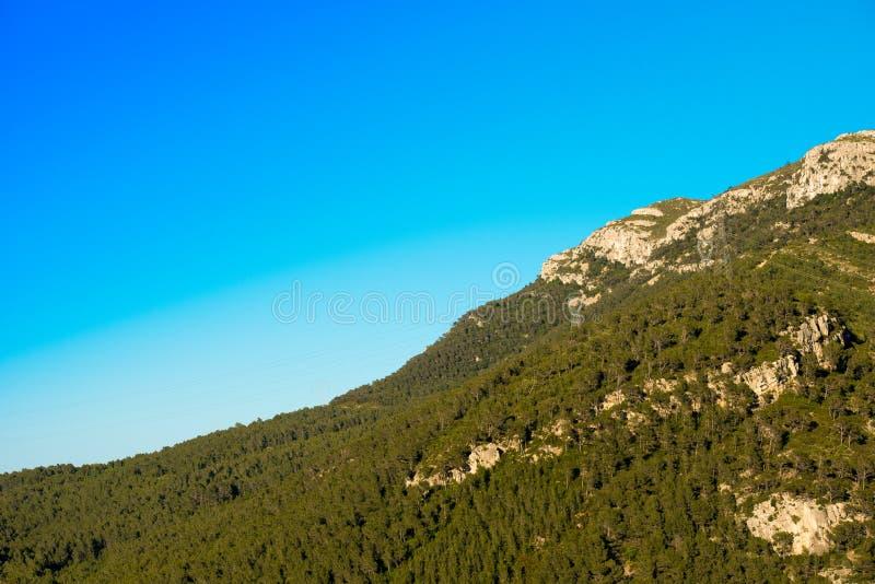 Montaña con los árboles verdes contra el cielo claro azul, Tarragona, Catalunya, España Copie el espacio para el texto foto de archivo