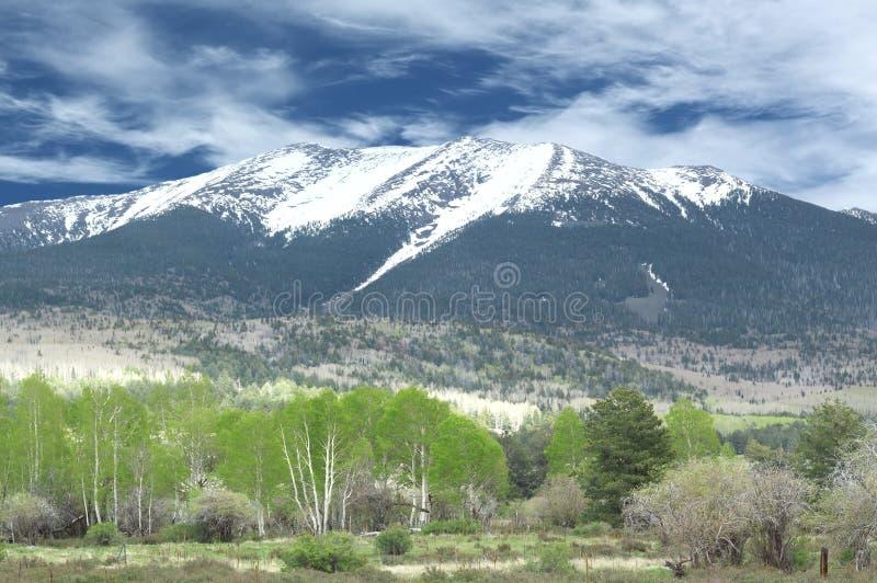 Montaña coronada de nieve imagen de archivo