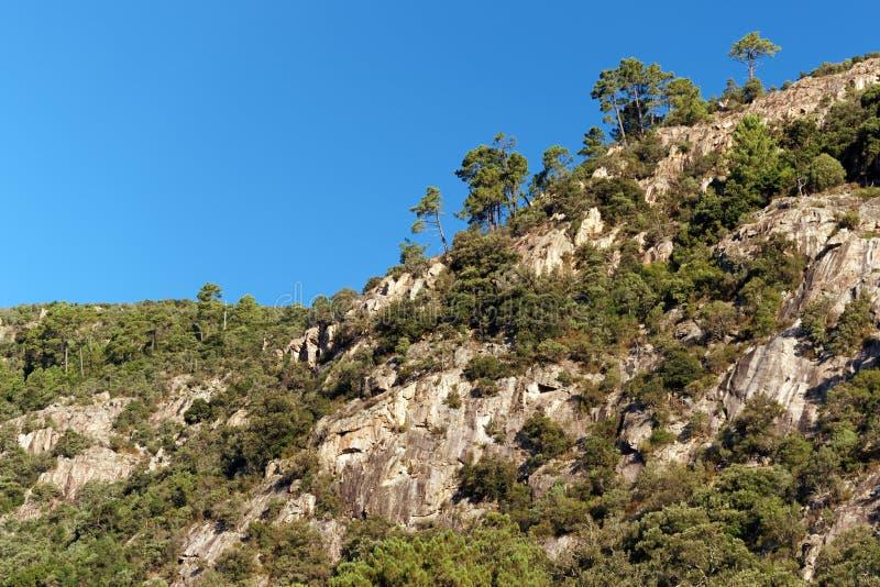 Montaña de Bavella en la isla de Córcega imágenes de archivo libres de regalías