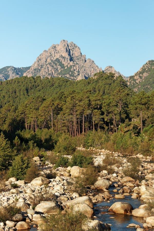 Montaña de Bavella y río del solenzara en la isla de Córcega foto de archivo