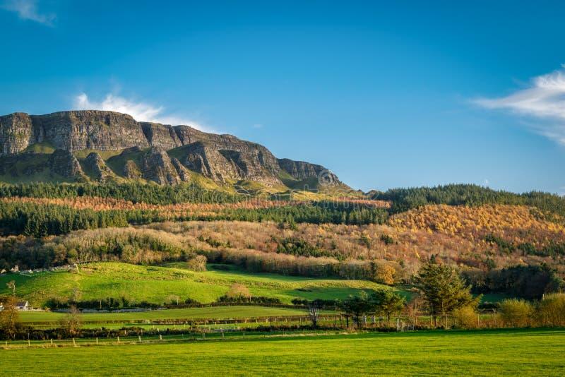 Montaña de Binevenagh imagen de archivo libre de regalías