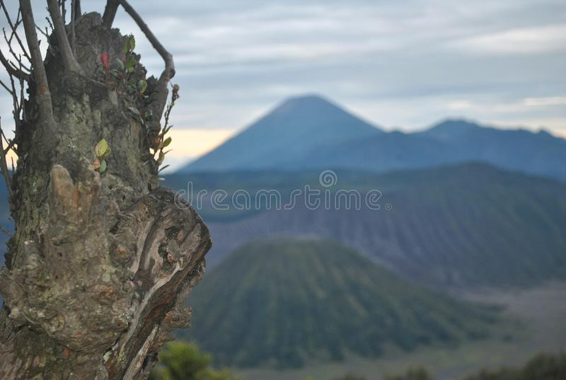 Montaña de Bromo imagenes de archivo