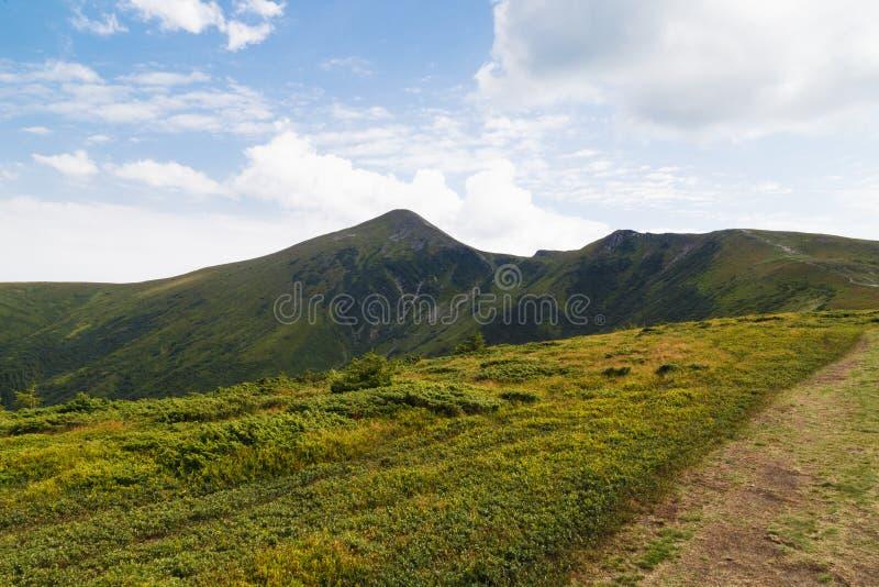 Montaña de Hoverla fotografía de archivo