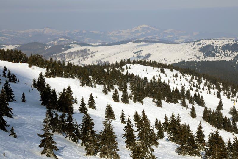 Montaña de Kopaonik, Serbia fotografía de archivo libre de regalías