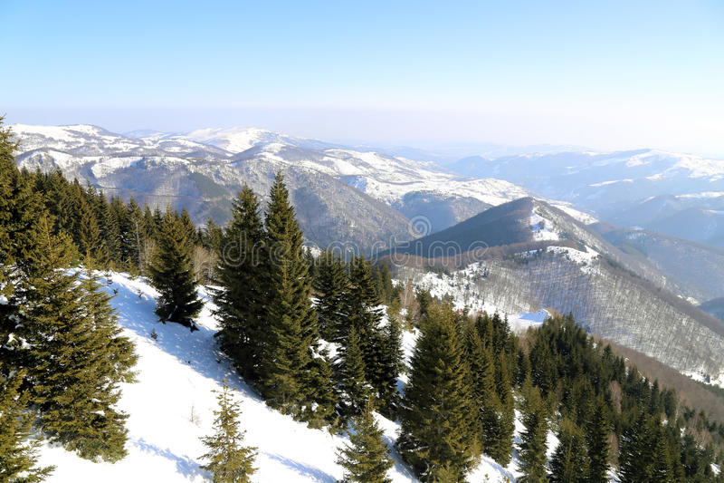 Montaña de Kopaonik, Serbia imágenes de archivo libres de regalías