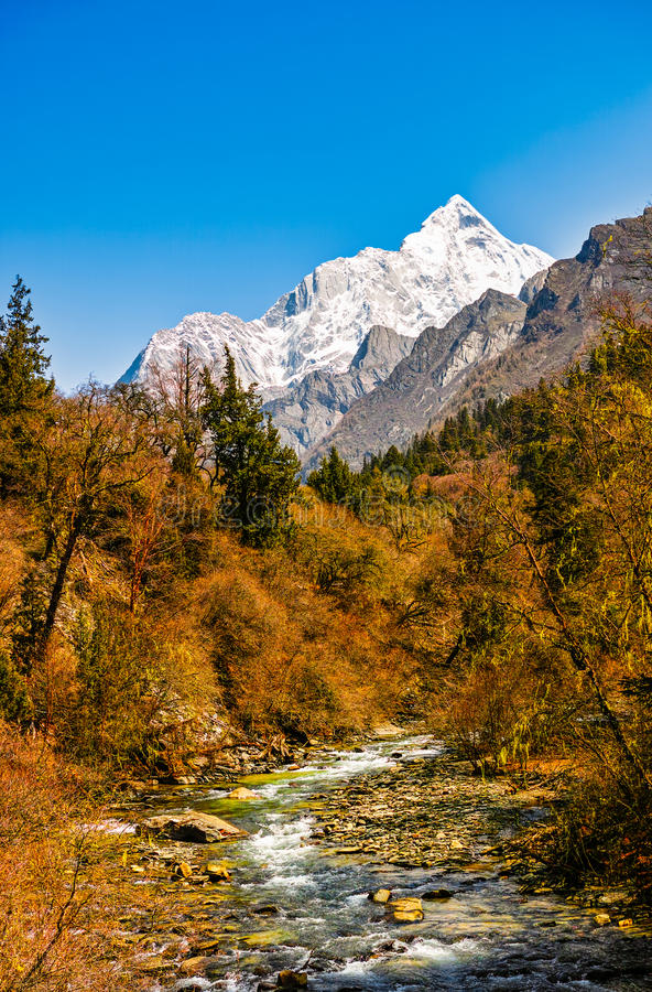 Montaña de la cala y de la nieve fotografía de archivo libre de regalías