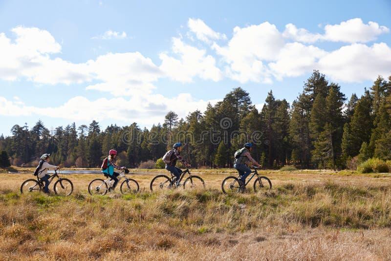 Montaña de la familia biking en el campo, Big Bear, California fotos de archivo