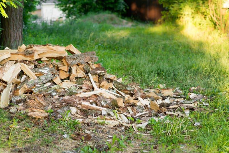 Montaña de la madera de abedul en un césped verde cerca del bosque imágenes de archivo libres de regalías