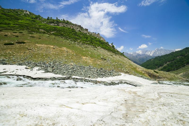 Download Montaña De La Nieve Con El Bosque Del Pino Foto de archivo - Imagen de blanc, mont: 42441528