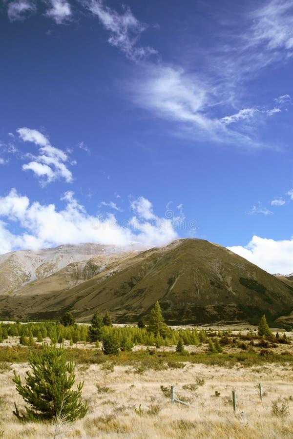Montaña de Nueva Zelandia fotografía de archivo libre de regalías