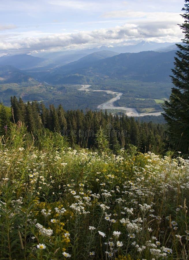 Montaña de Sauk foto de archivo libre de regalías